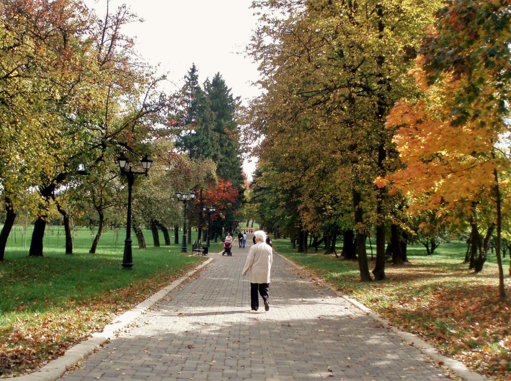 Loshitski park in Minsk. Nice alley