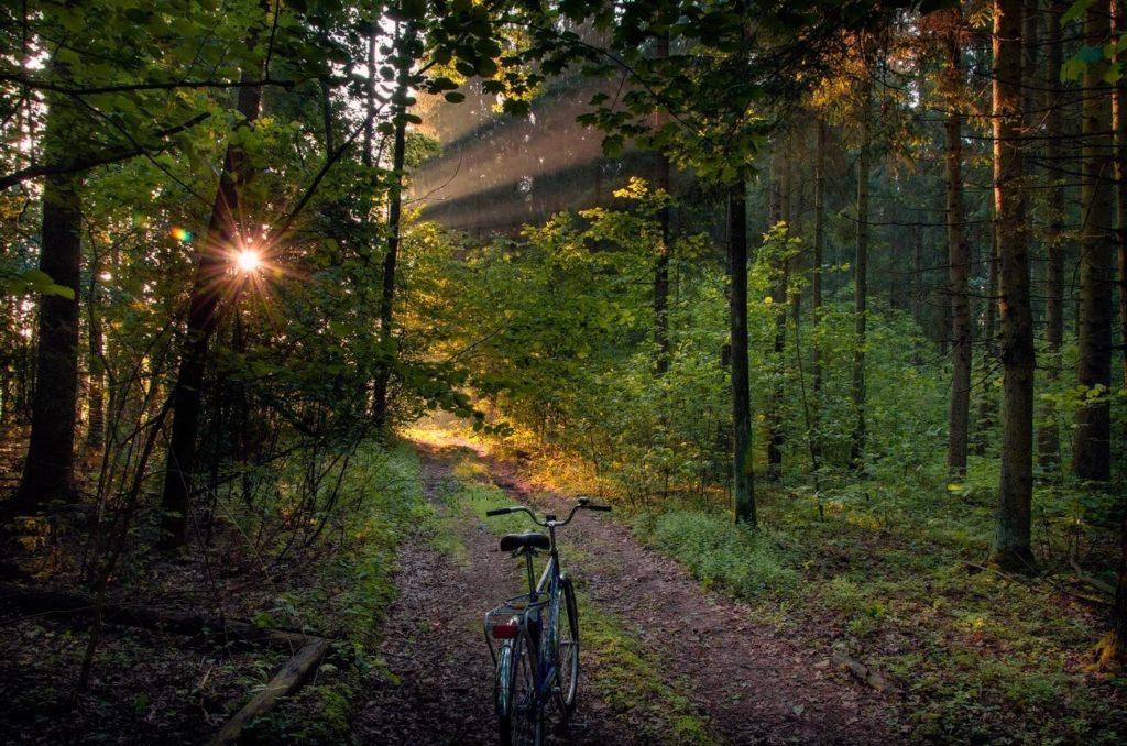 national park bike path belarus