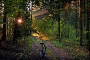 national park bike path belarus itinerary