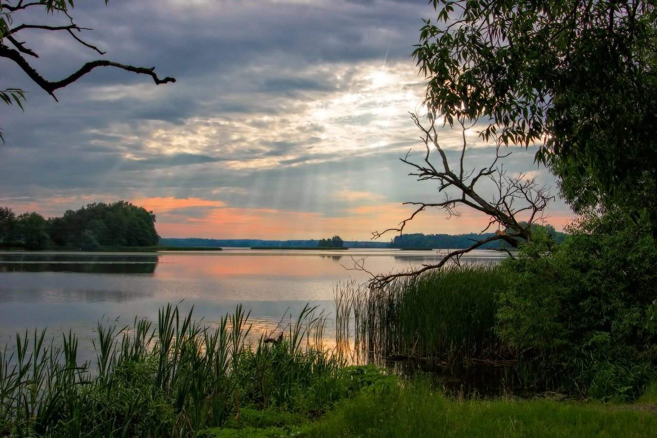 Famous nature reserves and national parks of Belarus