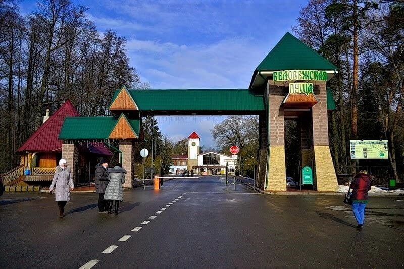 Another gates to Bialowieza forest