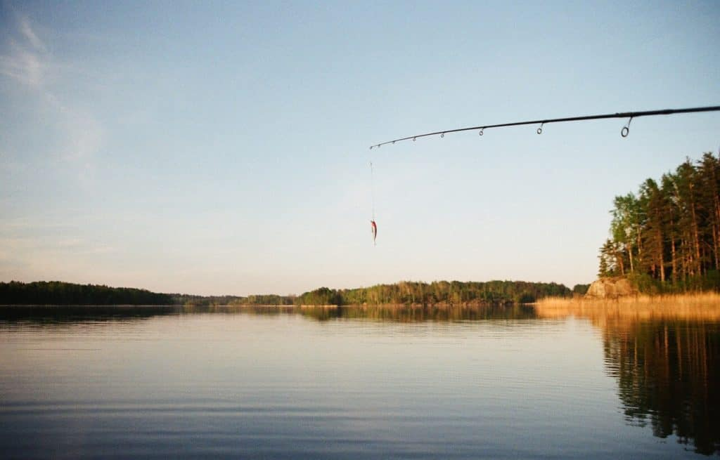 spinning rod on the lake in Belarus