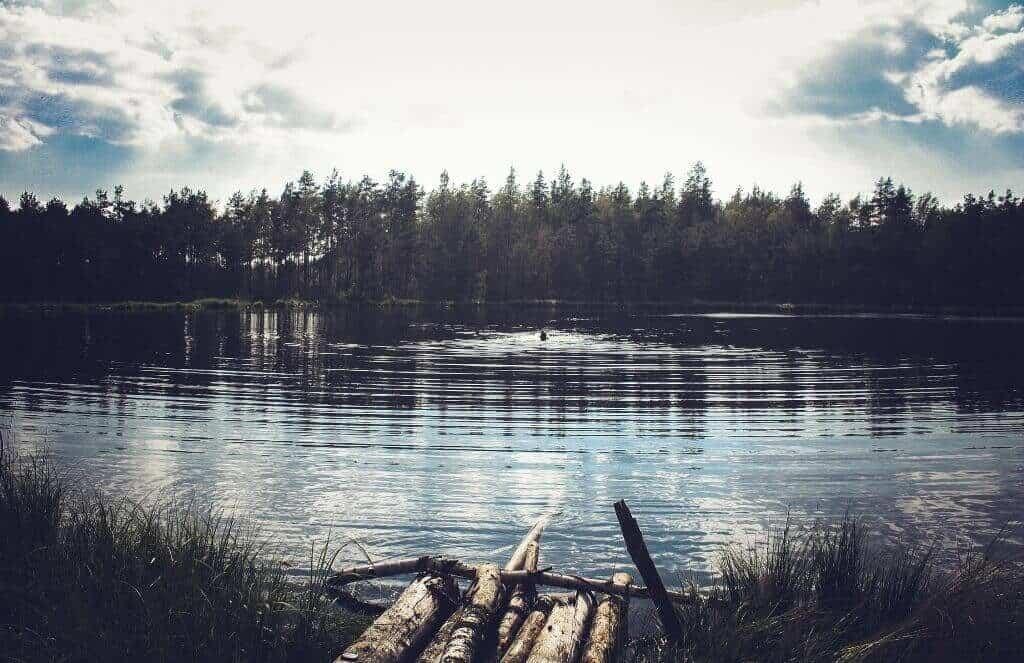 forest lake, fishing in Belarus