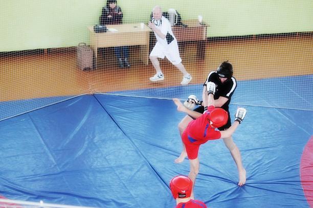 новый вид спорта с элементами борьбы